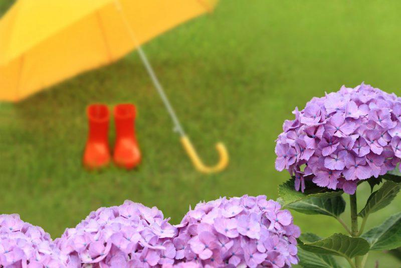赤ちゃんとの雨の日の遊び方4選