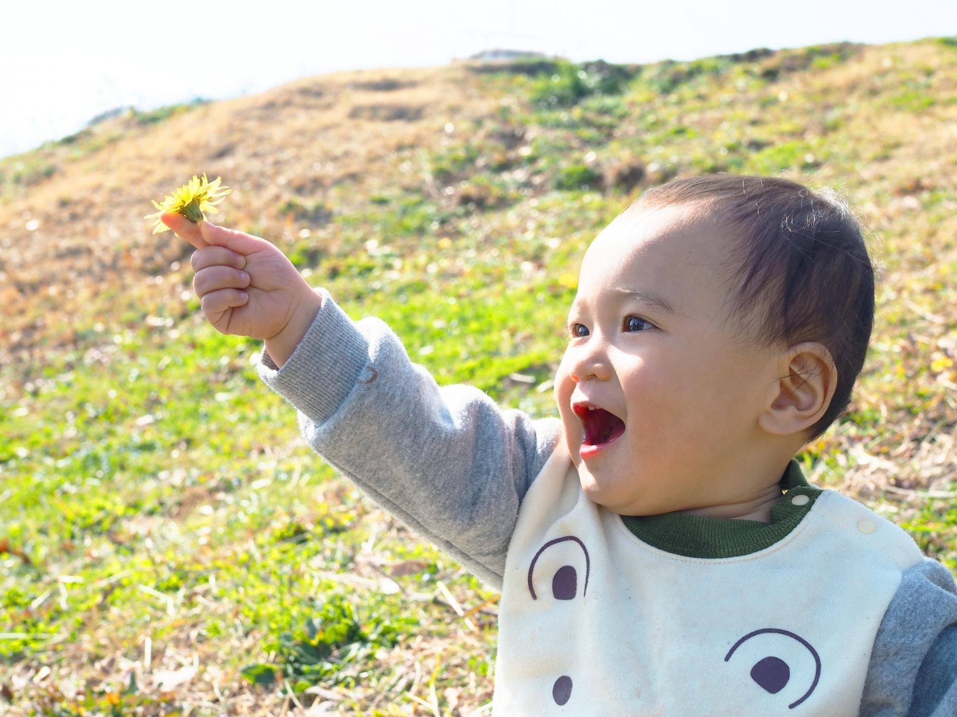 赤ちゃんとの外遊びでの注意点