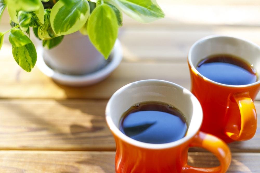 授乳中にコーヒーは控えた方がいいの_